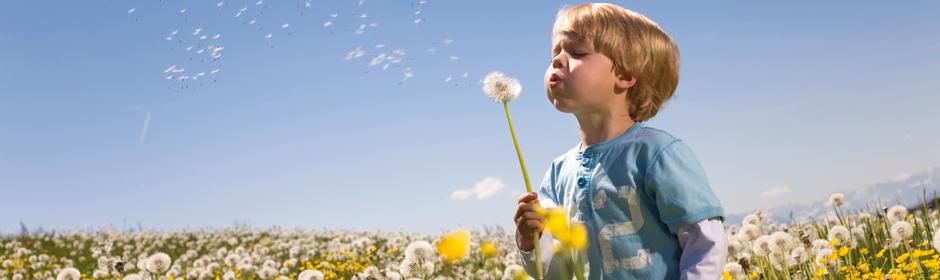 Sonnenklar: Die Vorteile eines Webasto Schiebedachs für Sie